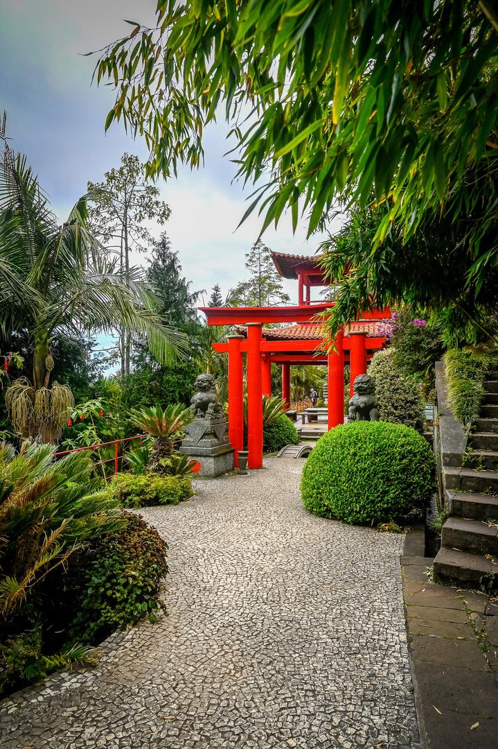 Tour durch den Monte Palace Tropical Garden