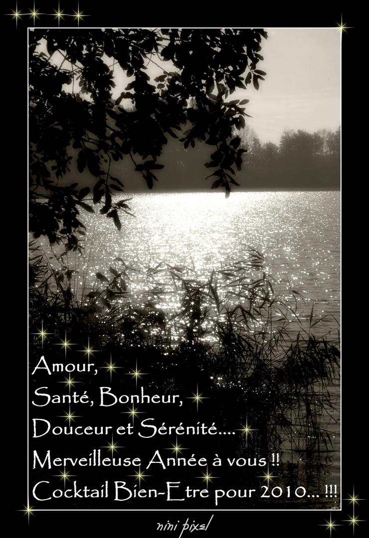Tout le bonheur du monde.... Best wishes for 2010...