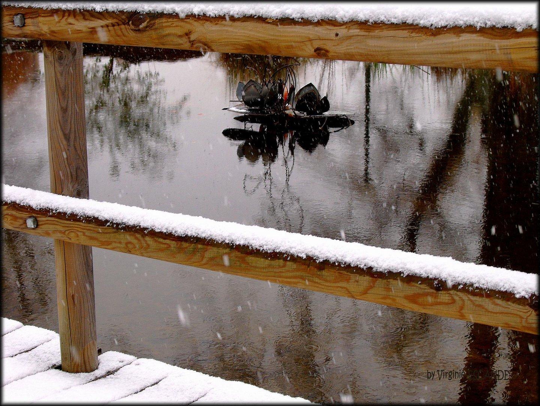 toute seule dans l'eau et sous la neige
