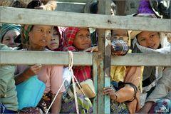 Toutistes birmans (02)