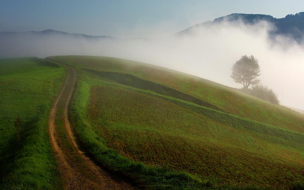 Towards the autumn...