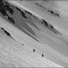 Towards Vogel summit