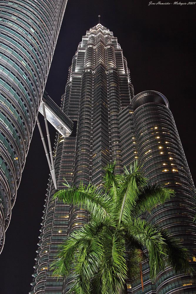 Tower mit Palme