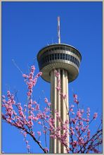 Tower of the Americas II