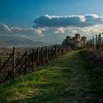 Tra i filari del castello