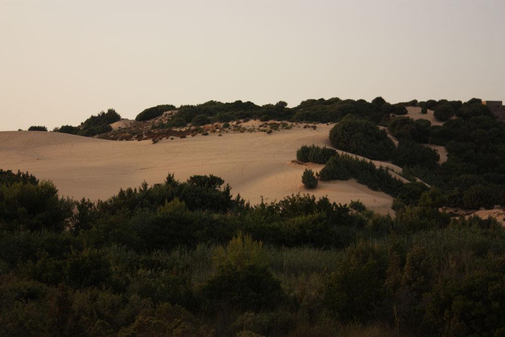 Tra le dune