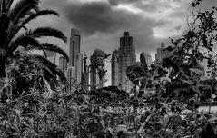 Tra natura  e città