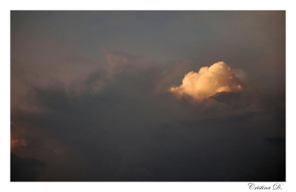 Tra nuvole cupe... un bocciolo di luce