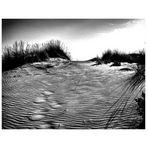 tracce di vento sulla sabbia