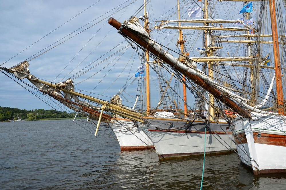 Traditionssegler liegen zur Hanse Sail 2014 im Rostocker Stadthafen