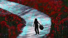 Träume in  rot-blau