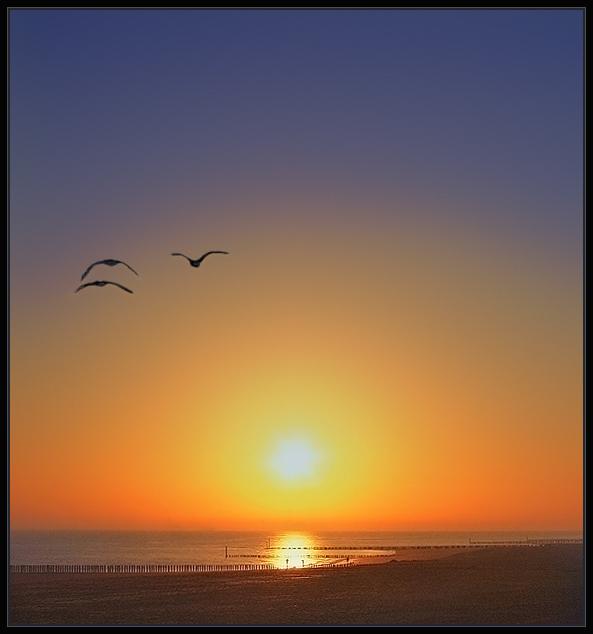 Träumerei am Morgen