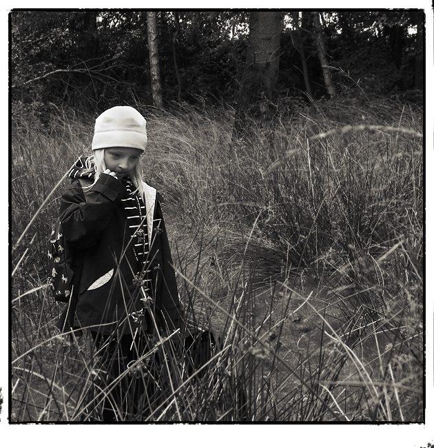 ...träumerle im gräserwald...
