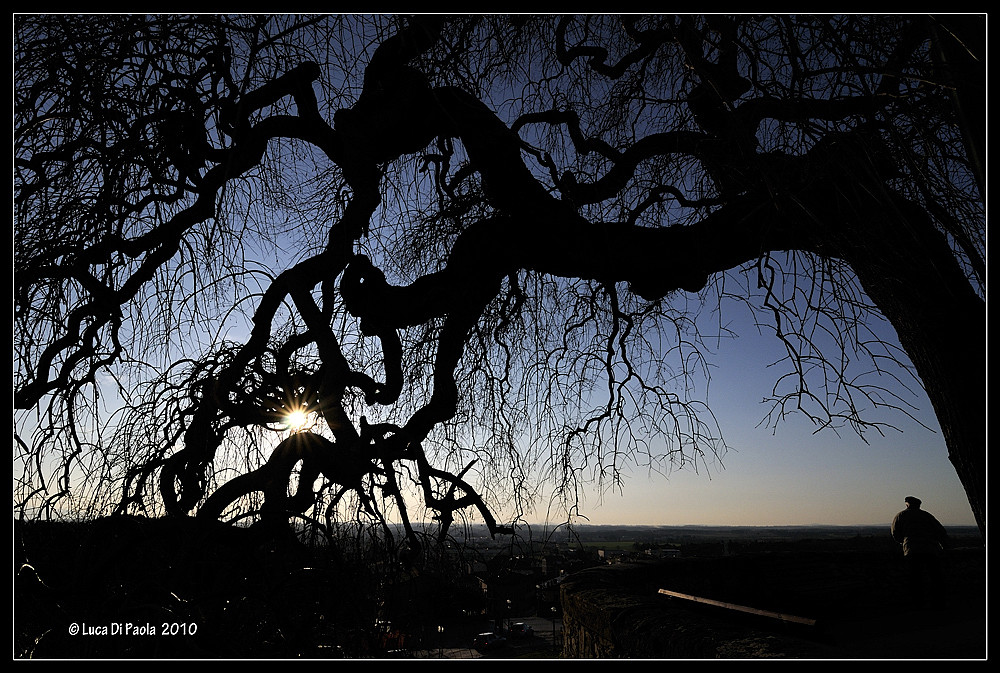 .... tramonti ....