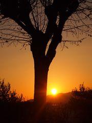 tramonti in campagna