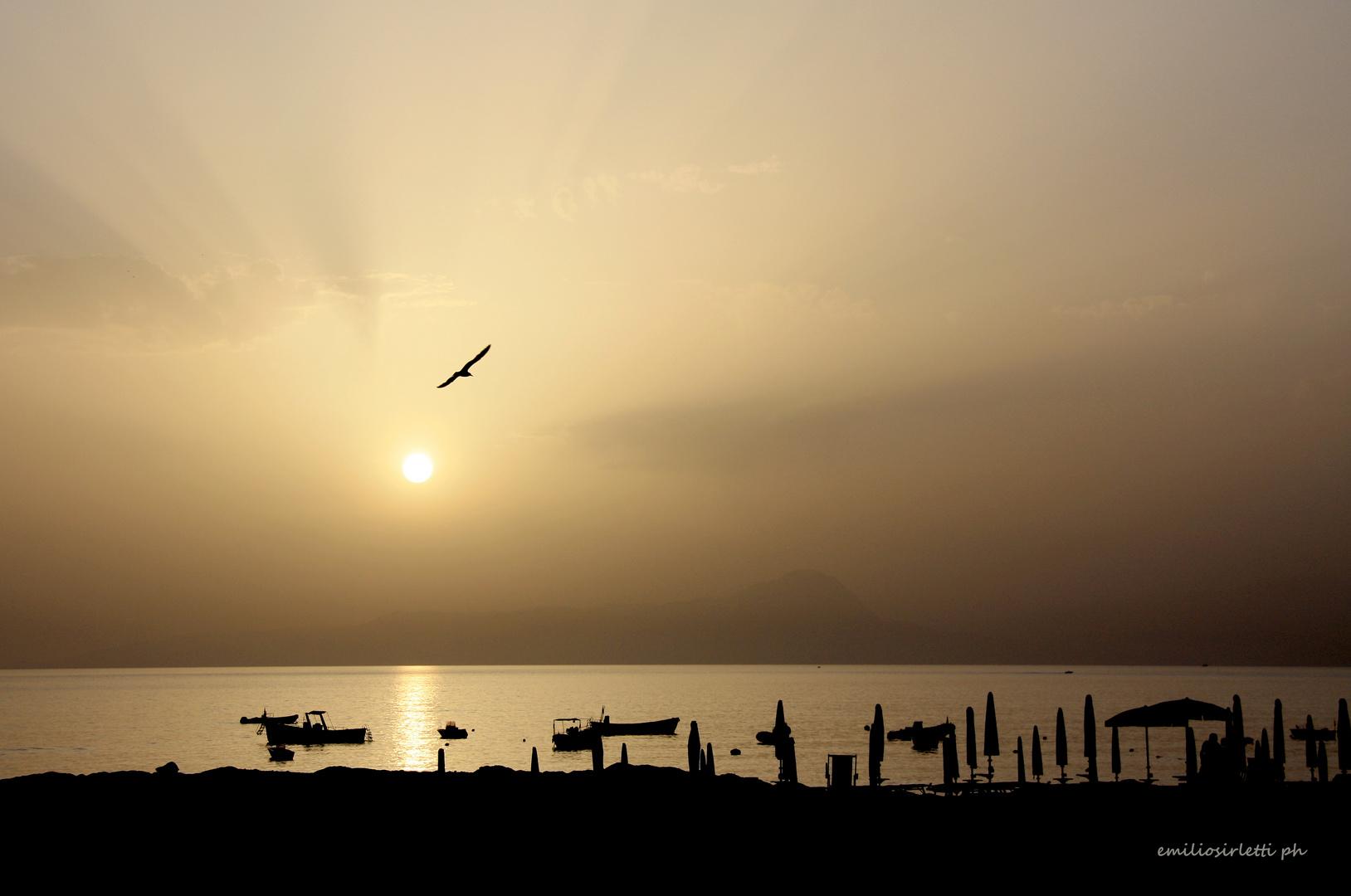 tramonto con gabbiano
