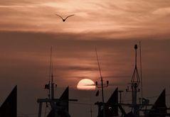 tramonto dai cantieri navali