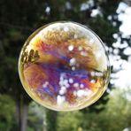 Tramonto in una bolla