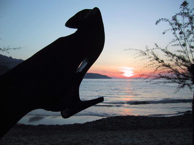 tramonto intrigante