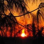 tramonto nel pavese