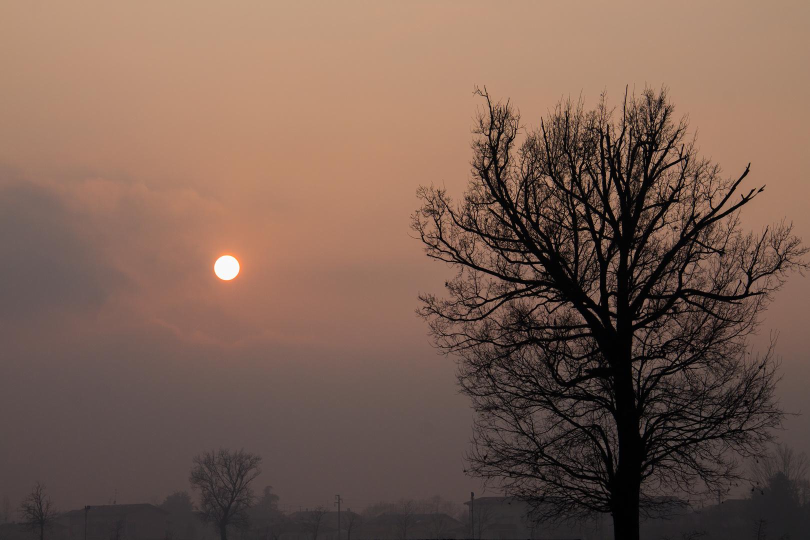 Tramonto Padano 2020 - Valpadana's sunset 2020