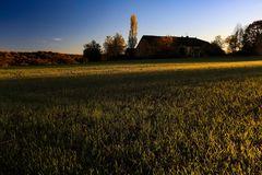 tramonto su grano d'autunno
