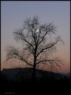 Tramonto...all'alba