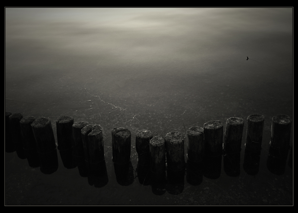|| tranquillity ||