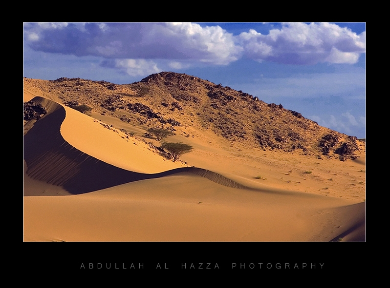 Transition Dune