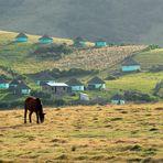 Transkei Paradise