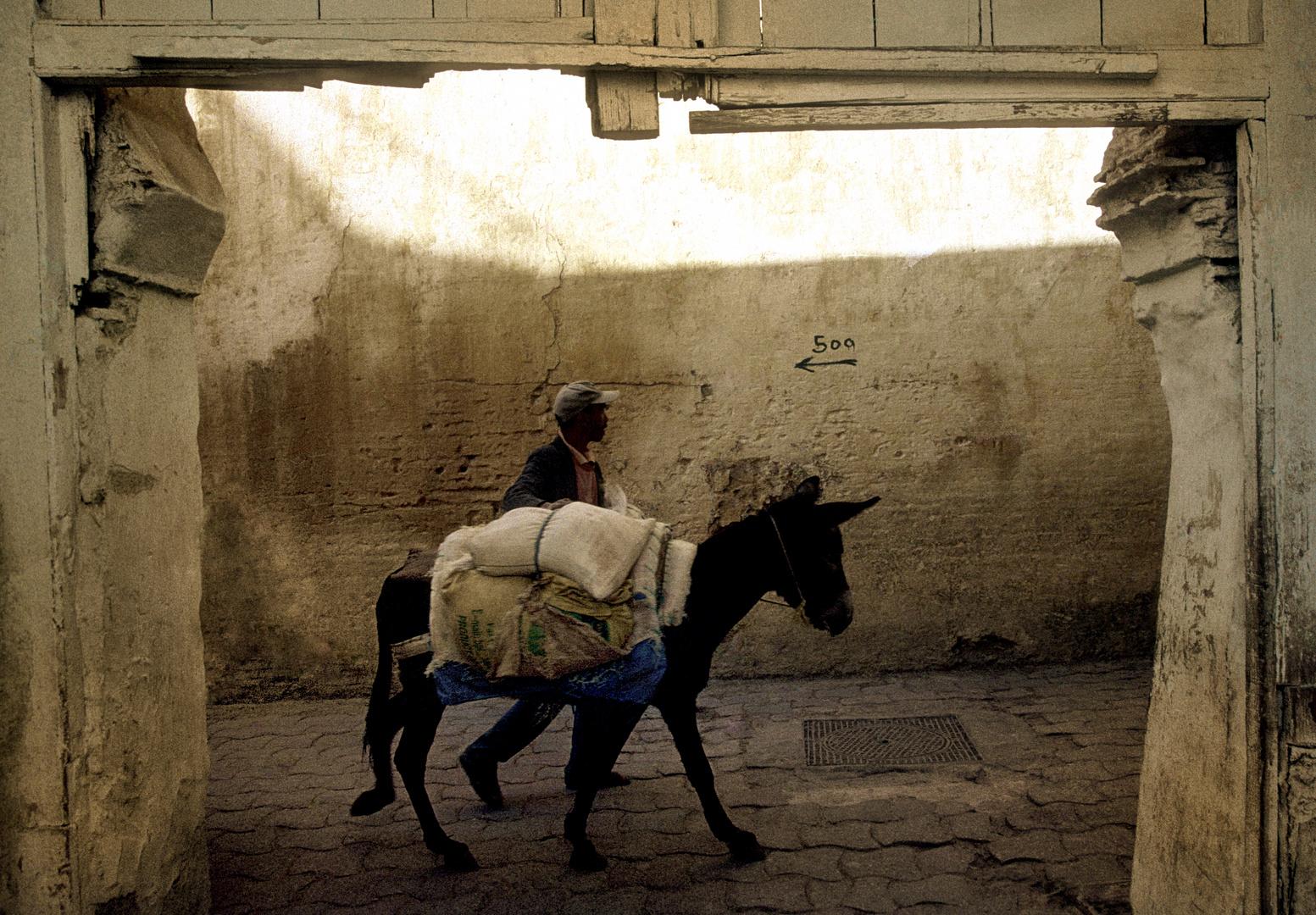 Transport in Meknes