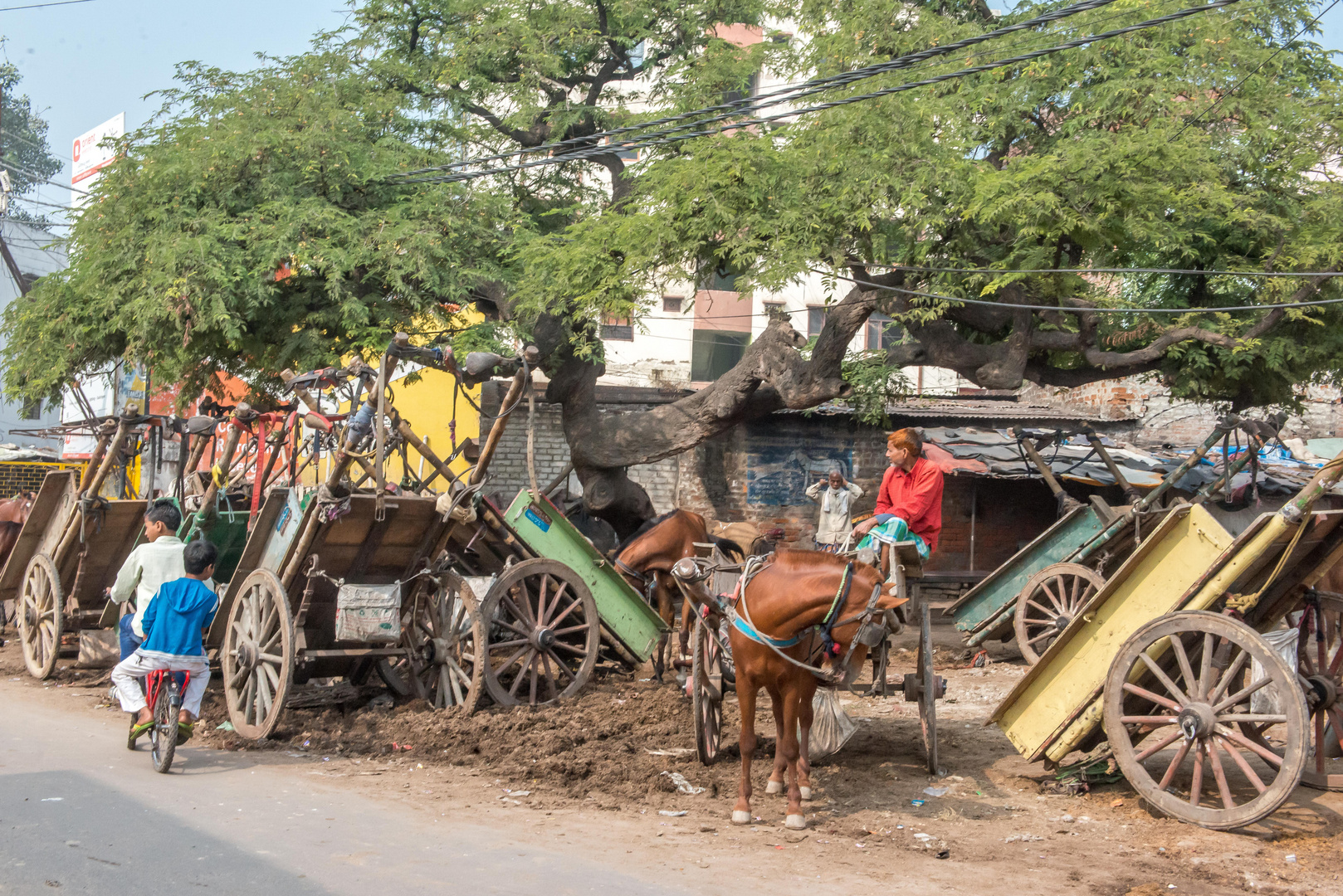 Transport mit Pferden