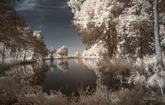 Trapsee infrarot