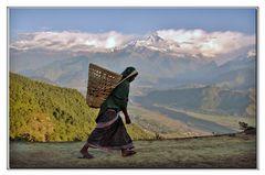 trasportare alla nepalese....