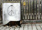 Trau dem Frieden nicht