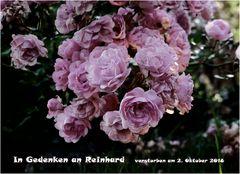 Trauerkarte für Silvia
