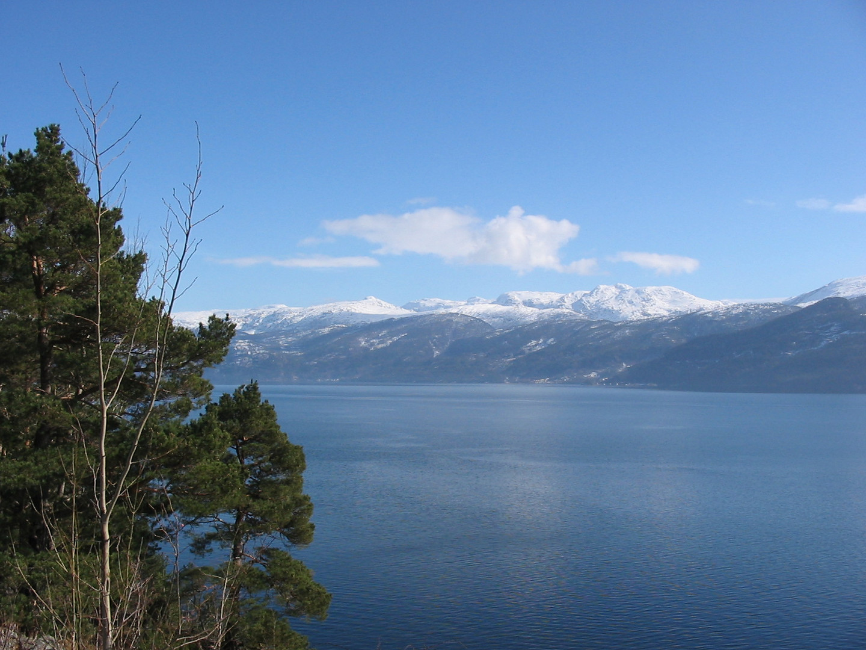 Traum in Norwegen