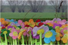 Traum vom Frühling