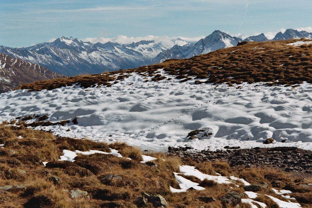 Traumblick Tiroler Alpen
