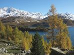 Traumlandschaft Engadin (1)