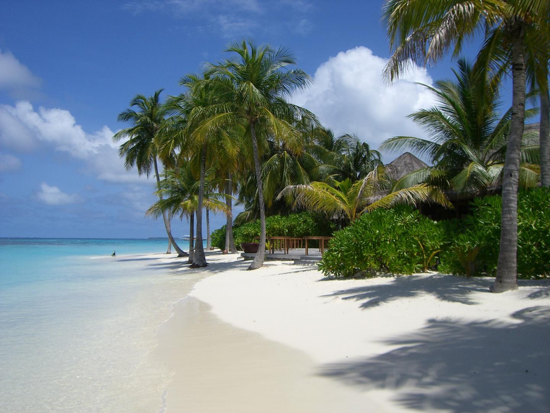 Traumstrände 3.2 (Malediven, Mirihi, Ari Atoll)