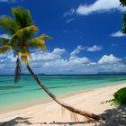 Traumstrand auf Fiji