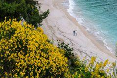 Traumurlaub am Strand von Sirolo