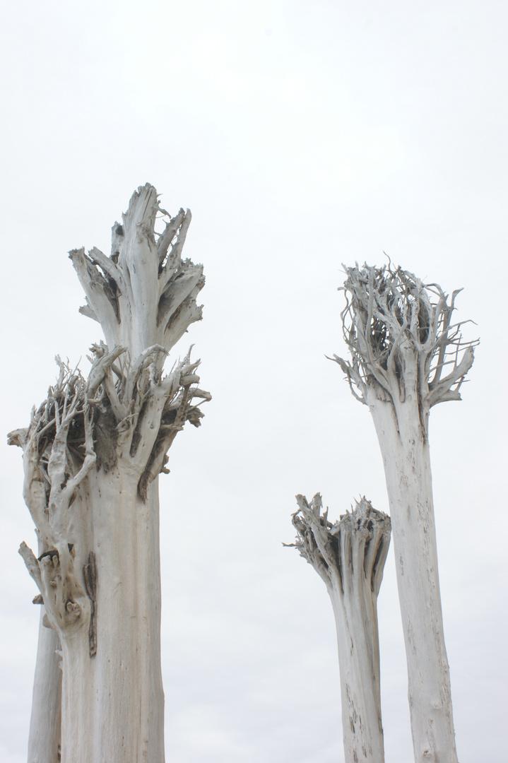 Traurige Bäume