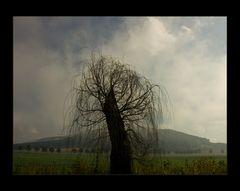 """TRAURIGE KOPFWEIDE im Nebel-Licht... - oder: was ist """"romantisch""""... ?   ;-))"""
