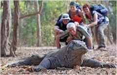 """Travel group """"Juressicpark"""" living in Komodo National Park"""