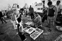 Travel notes: Gallipoli, 2011