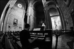 Travel notes: The organist (Puglia 2011, Gallipoli)