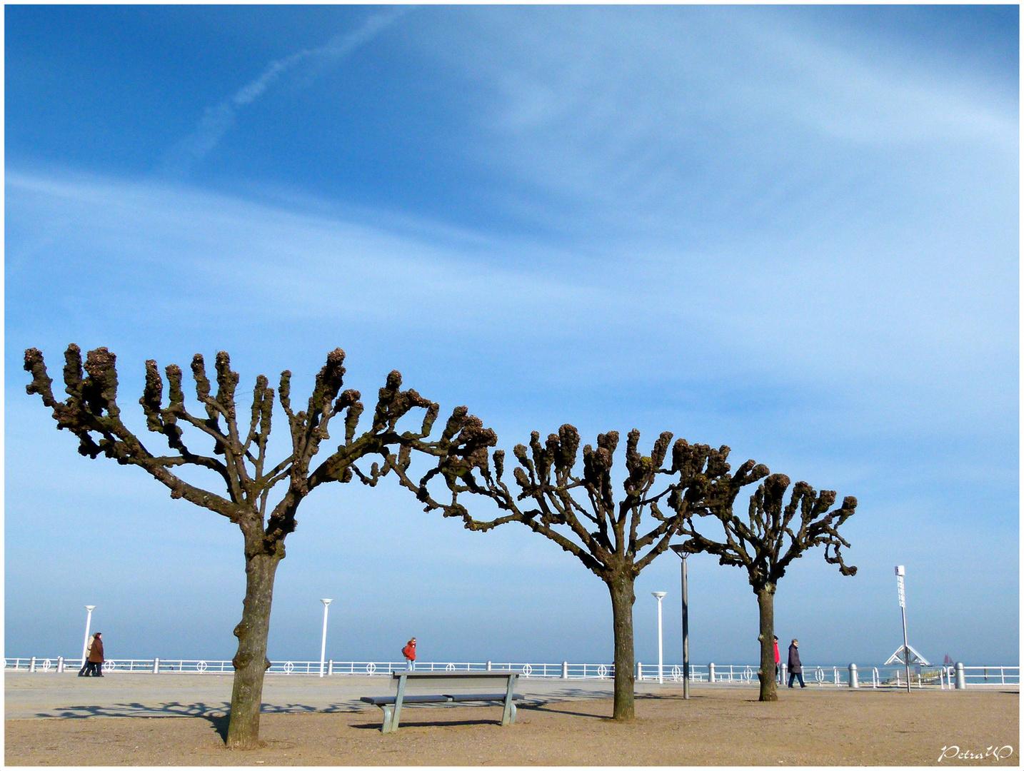 Travemünder Strandpromenade