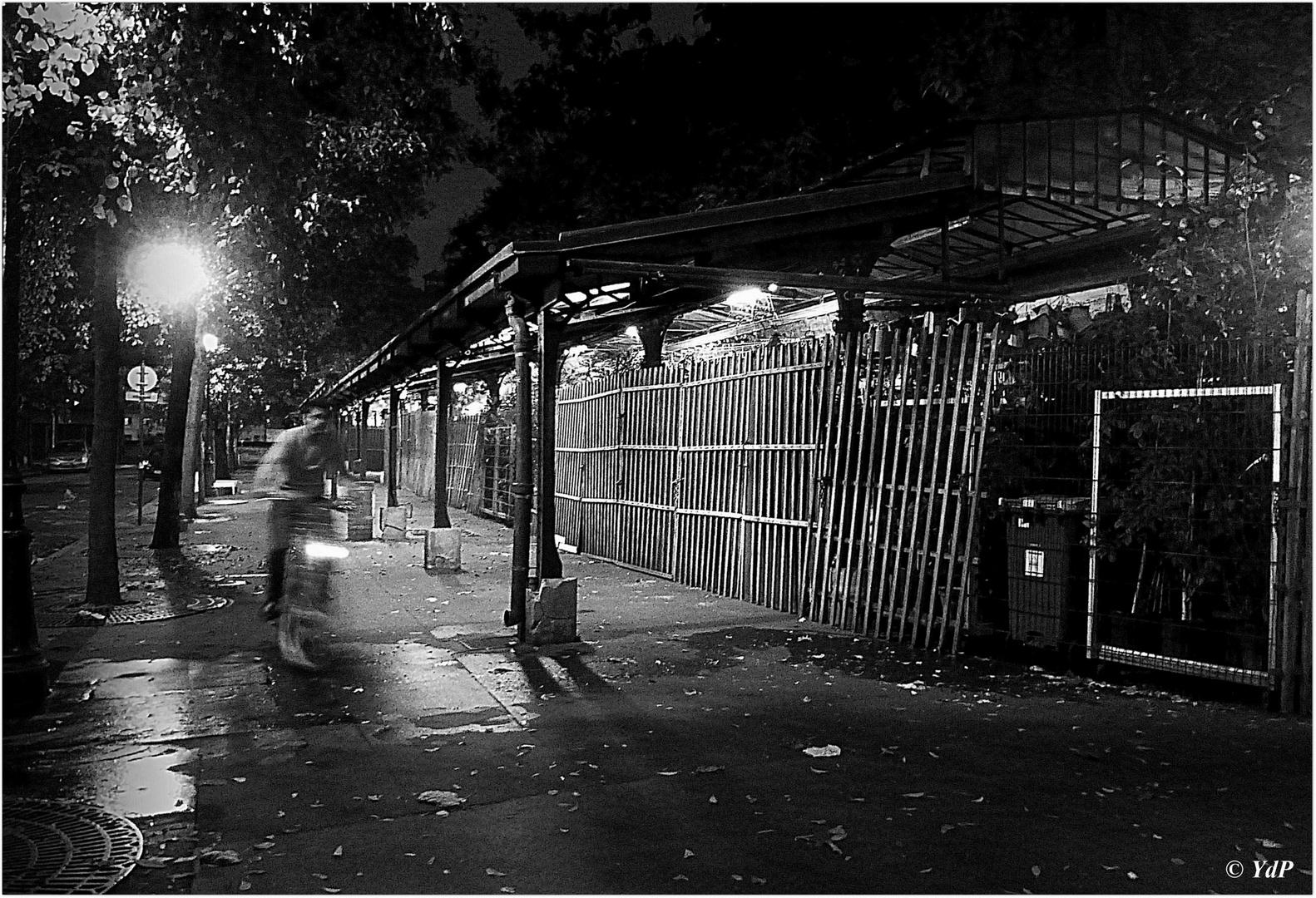Traversée nocturne de l'Ile de la Cité....